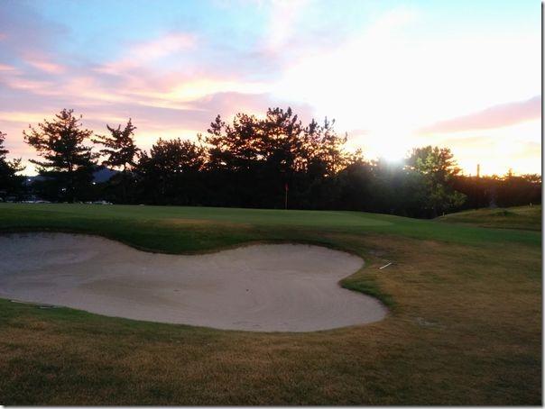 golfshiga
